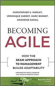 Becoming Agile : How The Seam approach To management Builds Adptability